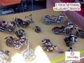 Feria-Artesanal-Vallelado (19)